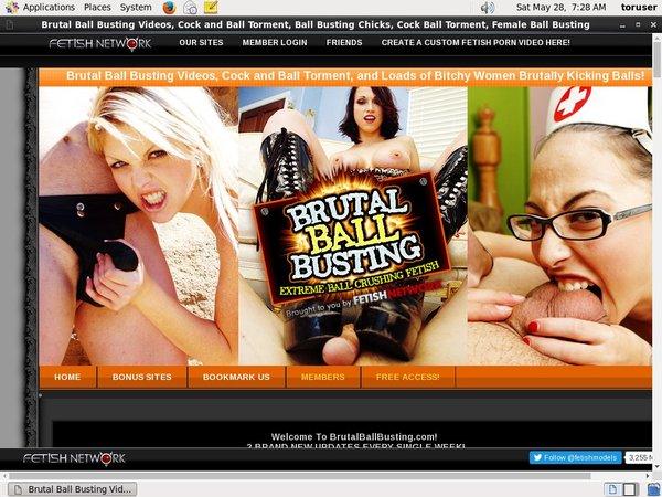 Brutalballbusting Promo Link